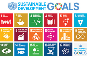 Percorsi per le competenze trasversali e l'orientamento (PCTO) in dialogo con le scuole: da Giurisprudenza un innovativo approccio con attività dedicate agli obiettivi dell'Agenda 2030